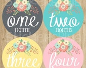 SALE Baby Girl Month Stickers Monthly Baby Stickers, Baby Month Stickers, Monthly Bodysuit Vintage Floral Shabby Grey Pink Turquoise Yellow