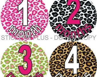 SALE Baby Month Stickers Plus FREE Gift Monthly Baby Girl Milestone Stickers Cheetah Leopard Baby Shower Gift Monthly Baby Age Stickers
