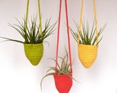 Hanging Air Plant Containers - Hanging Air Pockets - Hanging Air Plant Container with Large Air Plant Included