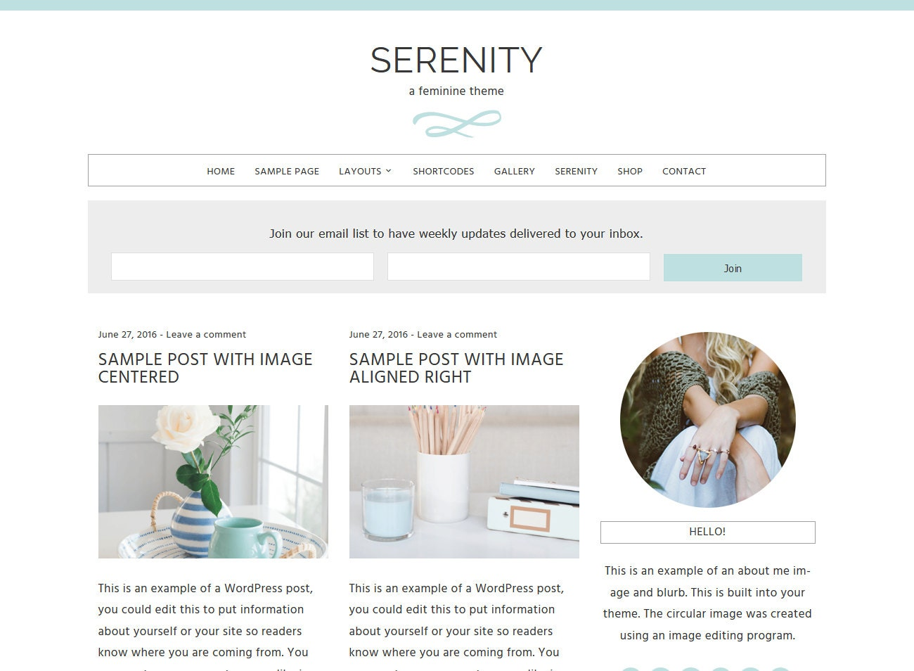 serenity feminine wordpress theme built for beginner and. Black Bedroom Furniture Sets. Home Design Ideas