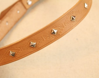 Gold Stamped Custom Dog Collar with Studs for Medium/Large Dogs