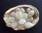 16 White Boulders w Red Abalone shell Genuine Beach Sea Glass AB-N19-16
