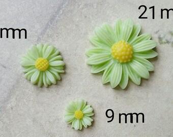 Light Green Colour Little Chrysanthemum Resin Flowers of Different Sizes (.tc .sm .sg)