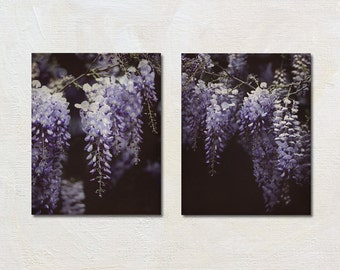 Wisteria Wall Art Set of Two Prints, 2 Purple Flower Photography Set, Nature Pictures, Modern Cottage Artwork, English Garden Picture Set