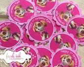 Skye from Paw Patrol Personalized Stickers