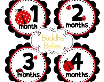 Baby Monthly Stickers - Ladybugs Nursery Gift - Baby Shower Gift - Baby Girl - Month Baby Stickers - Bodysuit Stickers - Baby Decals