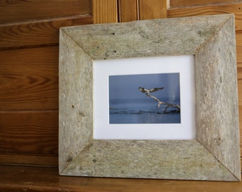 """The Guardian: 5x7"""" framed print in reclaimed wood"""