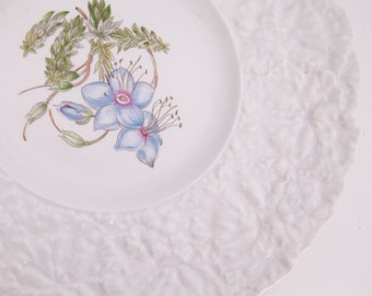 Vintage Royal Cauldon Plate Bristol Ironstone Woodstock Rock Rose Made in England 9 1/2 inch