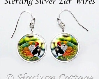 Colorful Parrot Earrings, Tropical Color Jewelry, Parrot Jewelry, Fine Art Photo, Your Choice of Finish