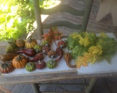 Mixed Lot Fall Picks, Gourds, Leaves, Fall Crafting Supplies, Fall DIY