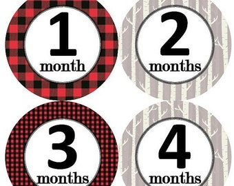 Top Seller of Assembled Baby Closet Dividers by