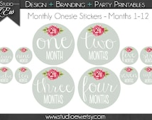 Monthly onesie baby stickers/Monthly Baby Stickers /Onesie Stickers /Monthly Stickers/Printable Stickers /Months 1-12 Onesie Digital/Printed