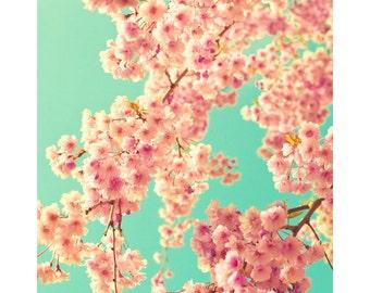 SALE, Canvas wall art, large wall art, wall art, canvas art, bathroom wall art, flower photography, coral, mint, blush, blush pink, decor