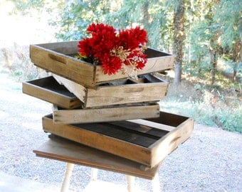 Antique 1930s Farmhouse Berry Crate Set 5 Bin Drawer Primitive Rustic Wood Cubby Shelf Repurposed Prairie Storage Crates Advertising Display