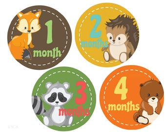Baby Milestone Stickers Baby Month Stickers Baby Boy Monthly Stickers Month Stickers Monthly Photo Stickers  Baby Shower Gift