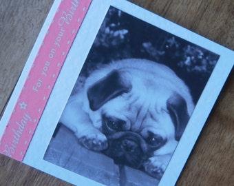 Pug Dog Birthday Card