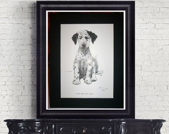 1930 Dalmatian dog Signed Cecil Aldin mounted dog plate print Unique Rare Christmas gift Thanksgiving Birthday