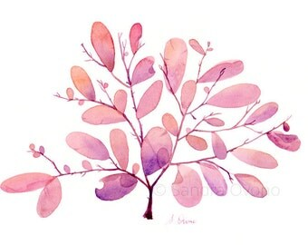 Red Seaweed Watercolor Illustration - Pink and purple seaweed Giclee print - Fine art archival reproduction - Available in A3, A4, A5, A6