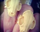 kitty skull ring