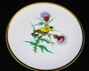 Hutschenreuther Selb Goldfinch Plate from the Drawings of Audubon Bavaria Germany Pasco