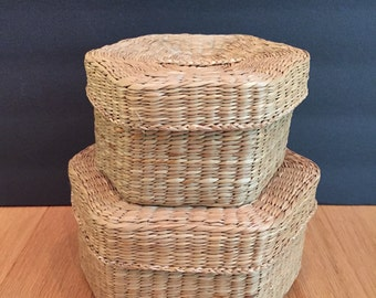pair of lidded nesting baskets