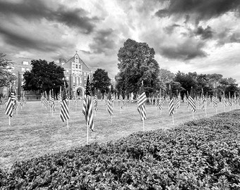 Field of Honor Flags Memorial Flags Our Lady of Mercy High School Fine Art Photo