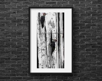 Karri Jamison PAPER PRINT, Title: Pileated Woodpeckers and Decaying Birch, GICLEE print on Paper 17.7x35.8 inches