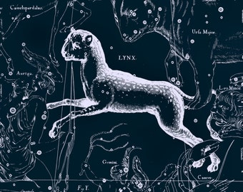 Astrology print, Zodiac constellation, Vintage prints, Star map, Astronomy print, Stars, Wall prints, Constellation print, Zodiac, 59