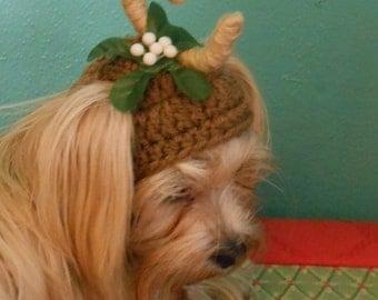 One Antler Cat or Dog Hat, Crocheted Christmas Mistletoe Pet Hat