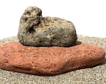 Holey Rock Beach Stone Terrarium Aquarium Fairy Garden Zen Raw Natural
