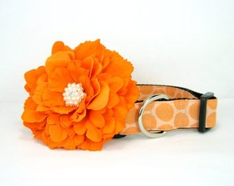 Peach Polka Dot Dog Collar with Orange flower set  (Mini,X-Small,Small,Medium ,Large or X-Large Size)- Adjustable