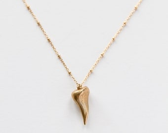Gold Filled & Bronze Tooth Necklace