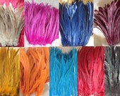"Dyed Rooster Tail Feathers.. 3"" Pack Of 8"" - 10"" in Length. Perfect For Making Headpiece & Costumes!! (Different Colors)"