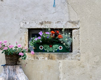 Flowers in a windowsill (printed photo)