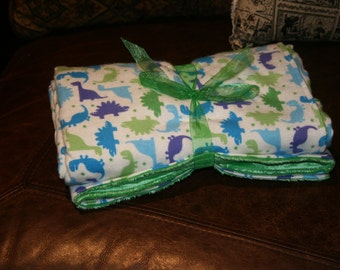 Blue and Green Dino Minky Baby Blanket