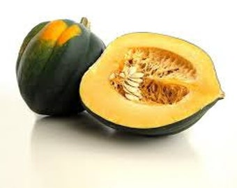 ACORN SQUASH SEEDS 10 Fresh seeds ready to plant in your garden