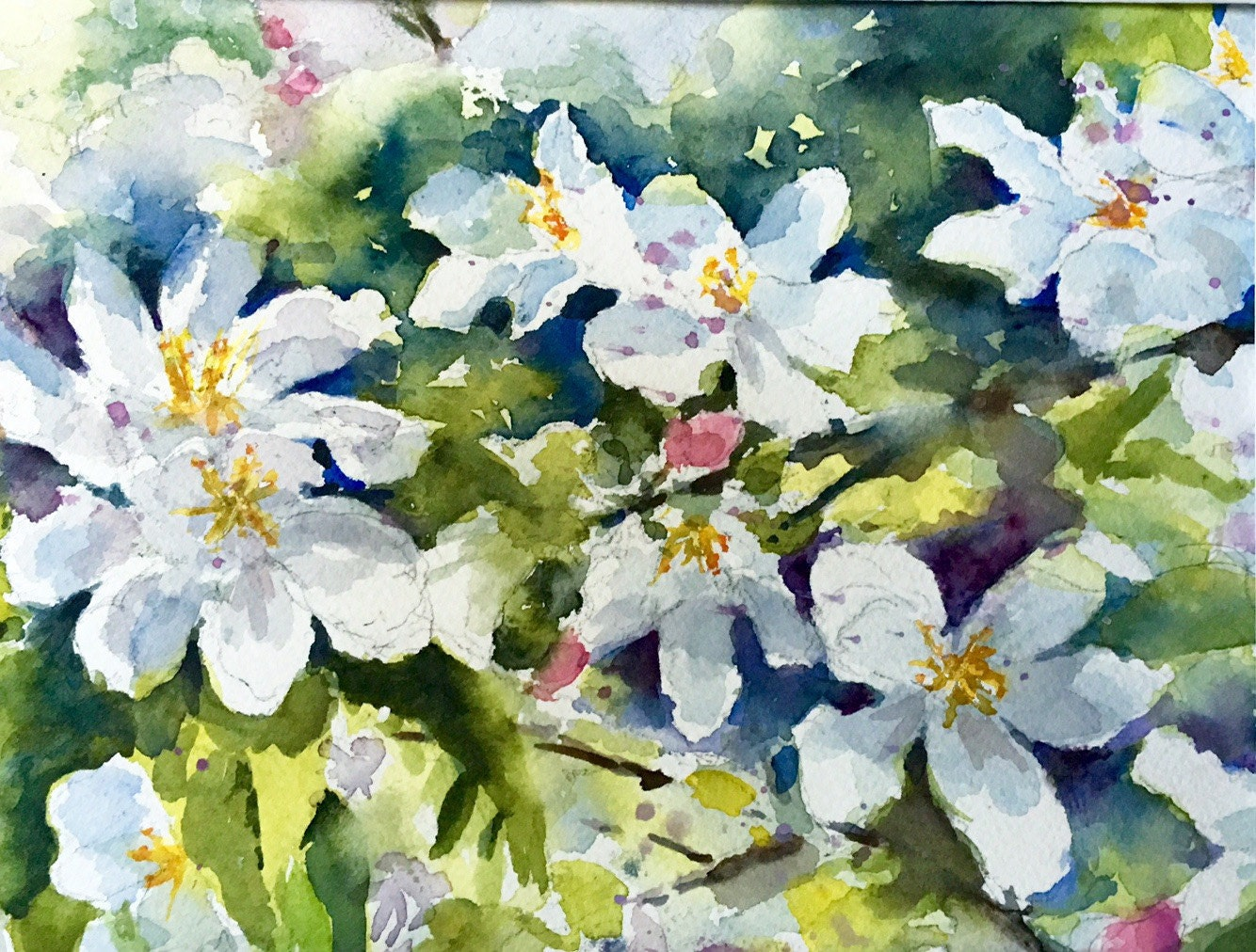 Apple blossoms spring flowers watercolor original painting for Spring flowers watercolor