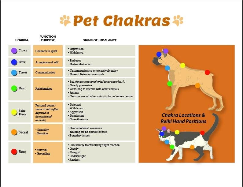 Très Dog & Cat 7 Chakras Printable Charts Pet Reiki Hand Positions HX89