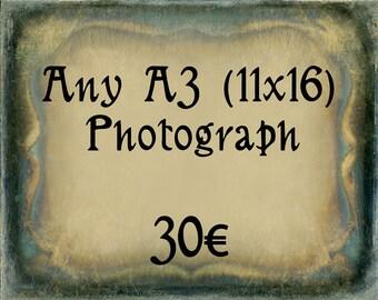 Any A3 (11 x 16) Photograph