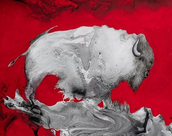 Buffalo - Study in Red