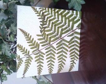 Fern Leaf Card