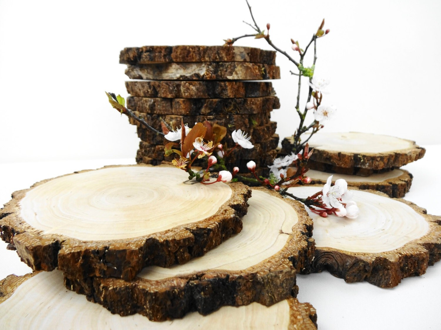 55 5 wood slices bark wood tree slices for Wood trunk slices
