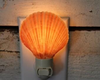 Beach Decor - Orange Pectins Night Light - Light - Beach Decor - Bathroom Decor