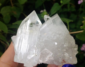 TOP QUALITY Apophyllite Crystal Specimen *Amazing Shine and Sparkle* #21