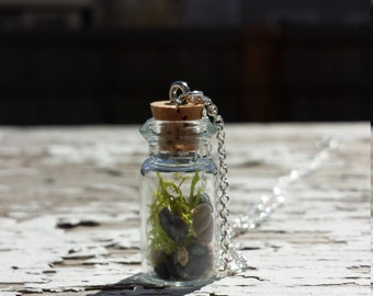 Tiny terrarium necklace