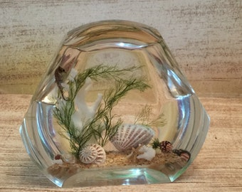 Vintage Clear Float Lucite Acrylic Ocean Scene With Sea Horse Star Fish Shells Paper Weight