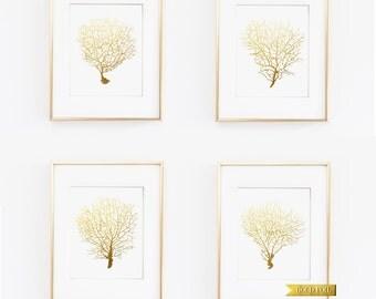 Gold Coral Reef Art, Elegant Nautical Home Decor, Gold Coastal Art, Beach Theme Decor,Wall Art, Home & Living, Gold and White Print