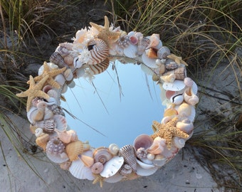 Seashell Mirror with Tiger Nautilus and Birds nest Coral