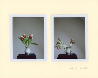 Tulips, Polaroid Photography, two photographs 8,5 x 10,5 cm, #686