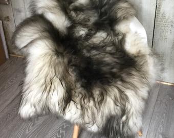 Stunning Ivory Icelandic Sheepskin Rug  with dark tips supersoft Long Haired Large Rug